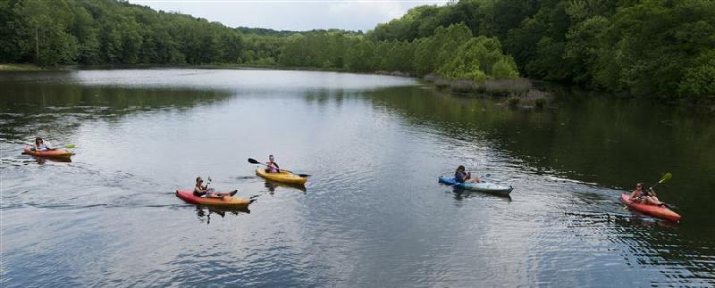 People kayak in a lake