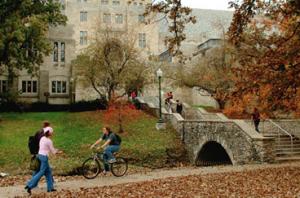 Students near IMU