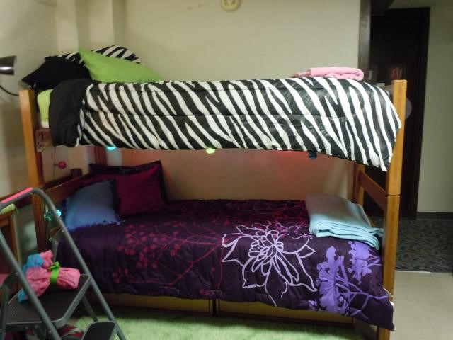 A bunk-bed in a dorm